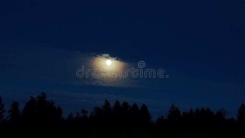 Nya Year& x27; s Eve Moon royaltyfri bild