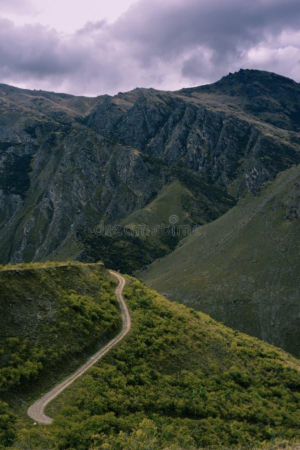 Nya Zeeland berg royaltyfri bild