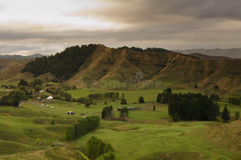 Nya Zeeland - glömd världsbygd arkivfoton