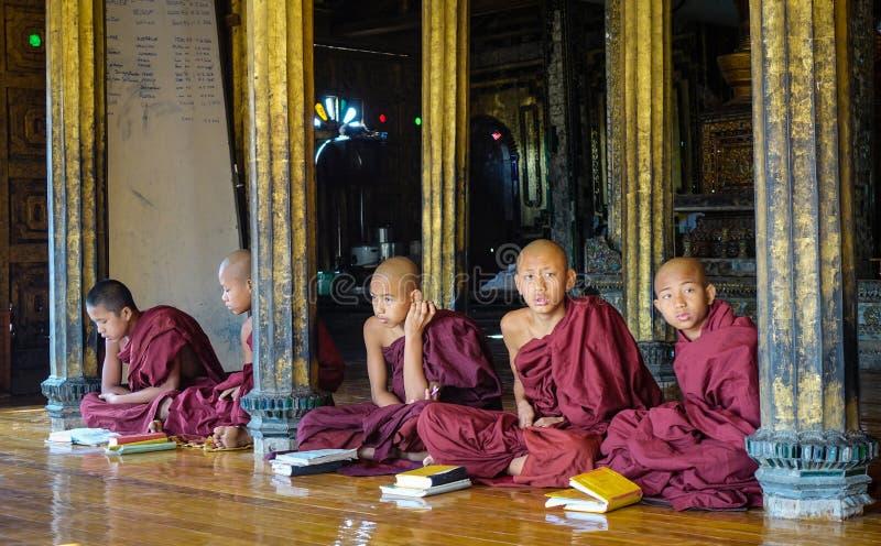 Novice boys studying at Buddhist monastery royalty free stock photography