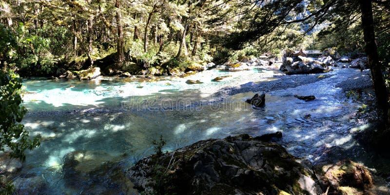 Nyazeeländsk is- flod - södra ö arkivbild