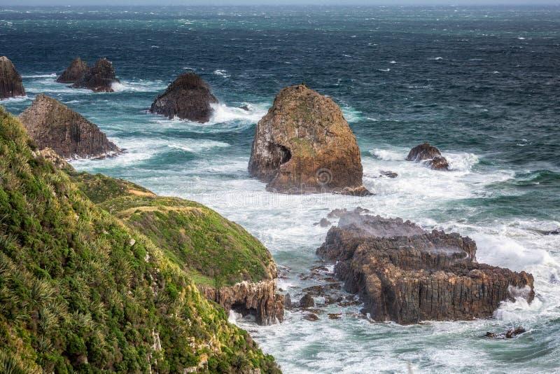 Nyazeeländsk kust royaltyfri foto