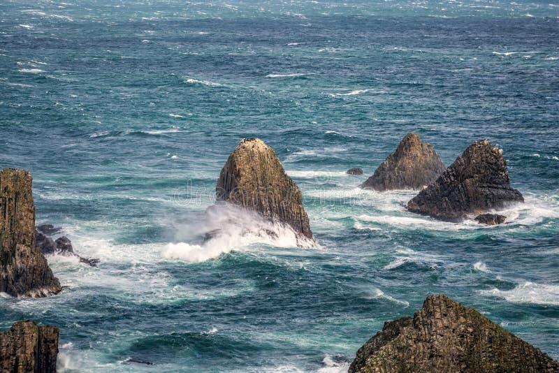 Nyazeeländsk kust arkivbilder