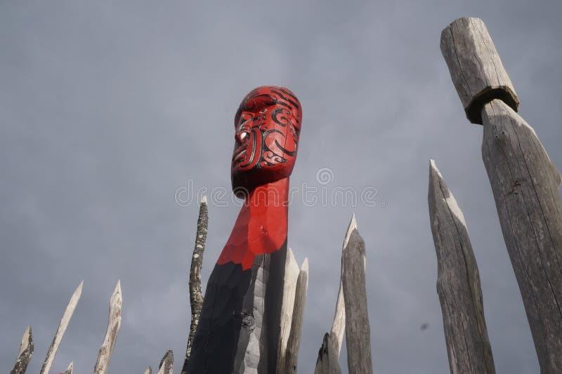 Nyazeeländska maoricarvings 8 fotografering för bildbyråer