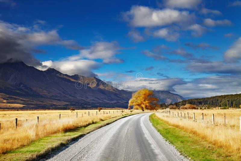 Nyazeeländskt landskap, södra ö royaltyfria foton