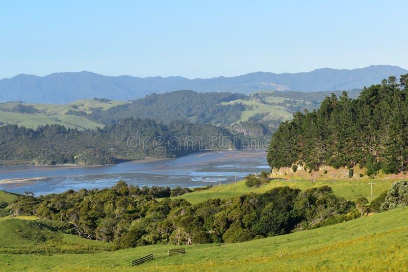 Nyazeeländskt lantligt landskap på den södra ön royaltyfria foton