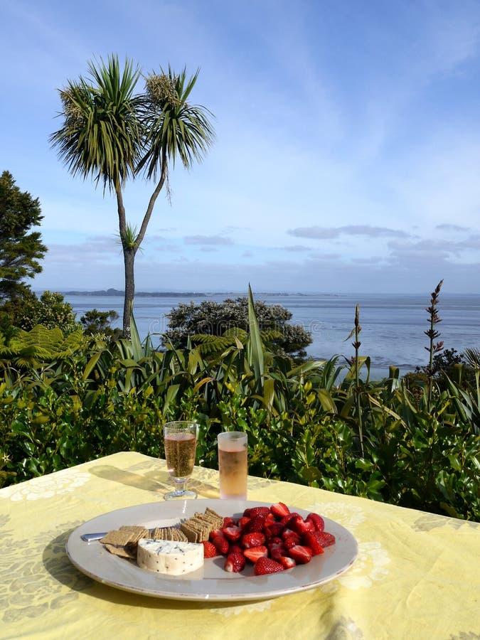 Nyazeeländskt: utomhus- äta middag royaltyfri foto