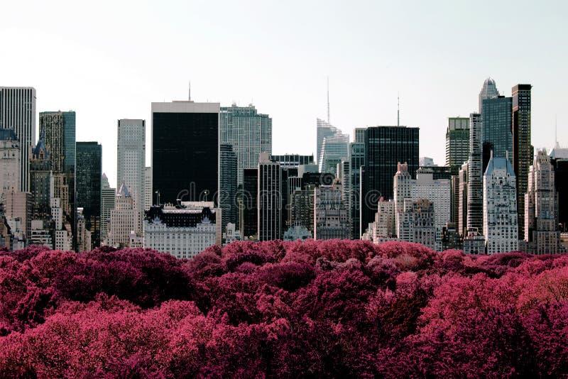 NYC地平线罕见的看法从中央公园的颜色红外线的 库存照片