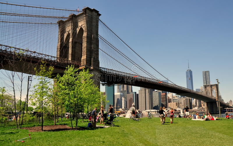 NYC: Γέφυρα του Μπρούκλιν & πάρκο στοκ εικόνες