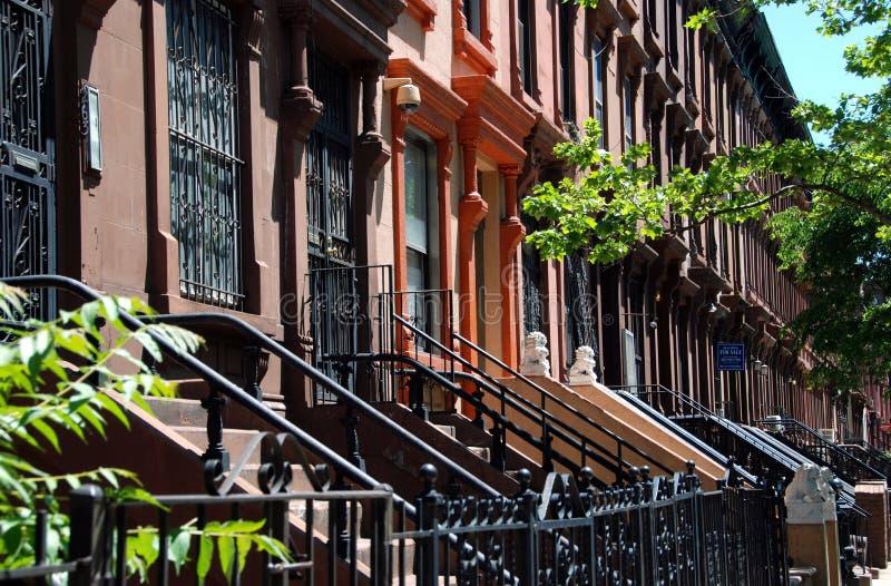NYC: Строка Brownstones Гарлема стоковая фотография