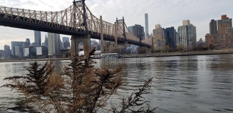 NYC photo stock