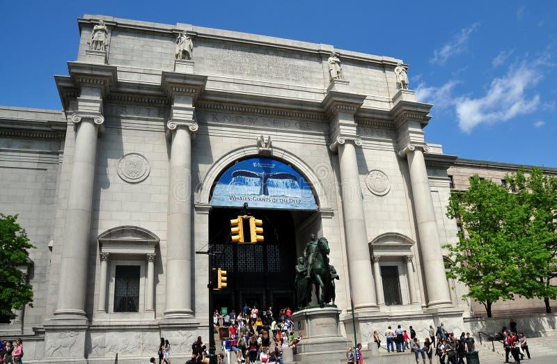 NYC: Amerikanskt museum av naturhistoria arkivfoto
