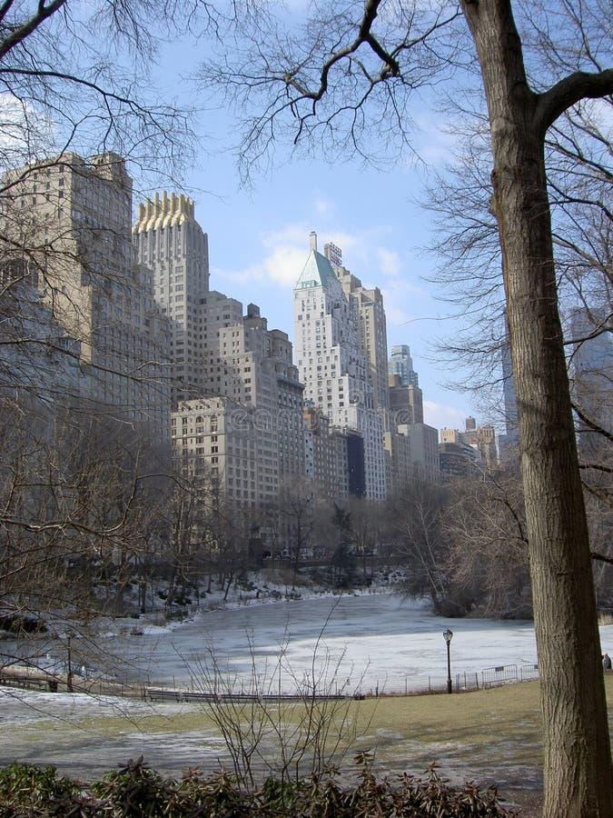 NYC Central Park im Winter lizenzfreies stockbild