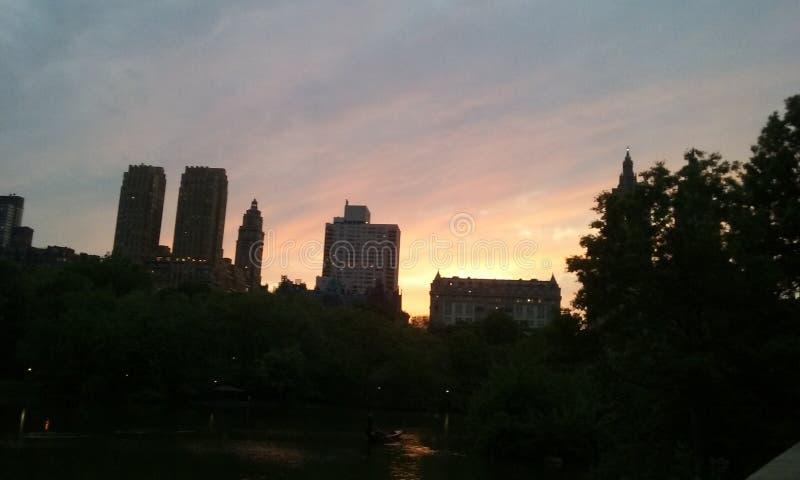 Nyc Central Park solnedgångmagi New York City royaltyfri foto
