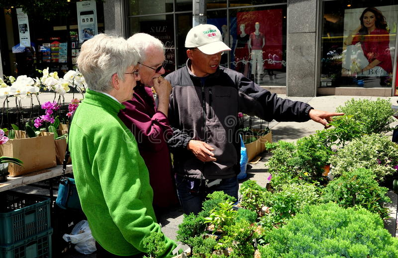 NYC: Couple Buying Bonsai Tree royalty free stock photography