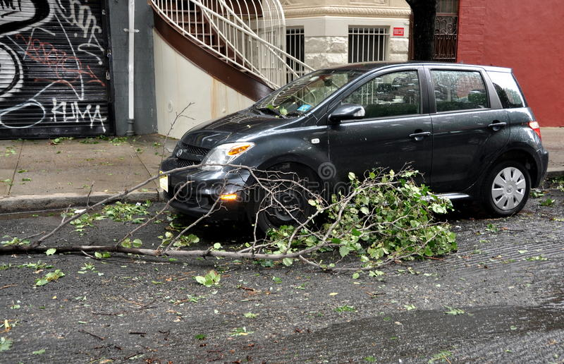 NYC: Downed Tree Branch from Hurricane Irene. Fallen tree limb blocks an automobile parked on West 82nd Street as a result of the powerful 60 mph winds from royalty free stock photo