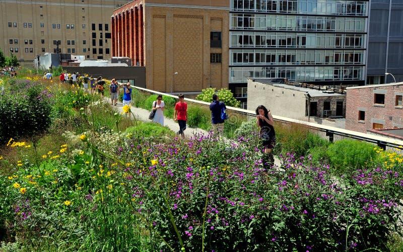 NYC: Folket som strosar i den höga linjen, parkerar royaltyfri fotografi