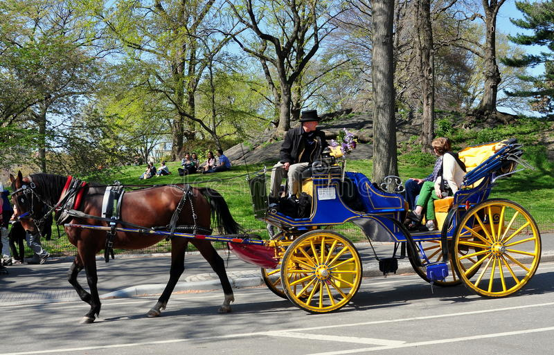 NYC: Hansom Carriage in Central Park stock photography