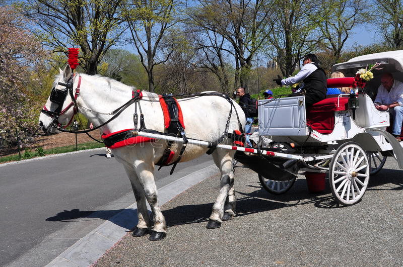 Download NYC: Horse Carriage In Central Park Editorial Photography - Image: 30614607