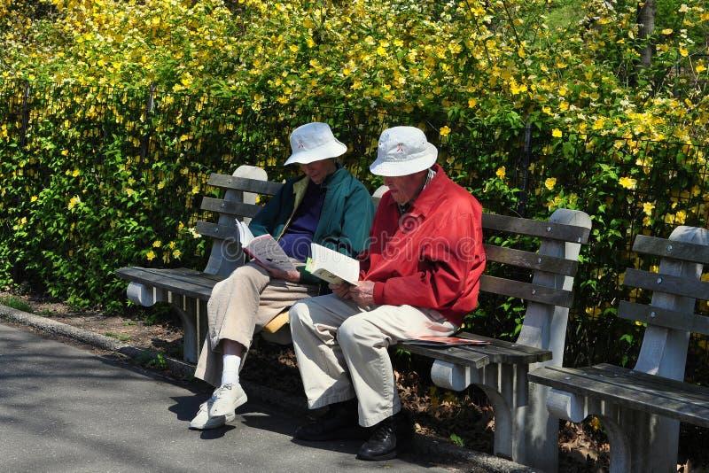 NYC: Libri di lettura degli anziani in parco immagini stock