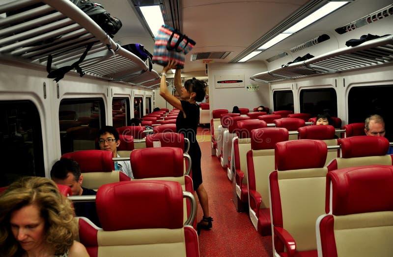 NYC: Mujer en carro del ferrocarril del Metro-norte