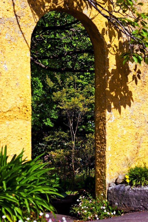 Nyckel in i en frodig trädgård royaltyfri bild