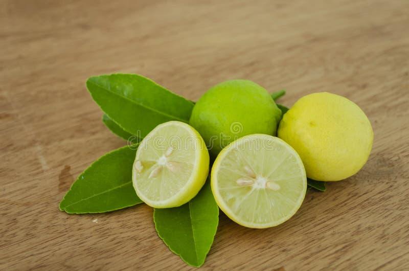 Nyckel- limefrukter och sidor vektor illustrationer