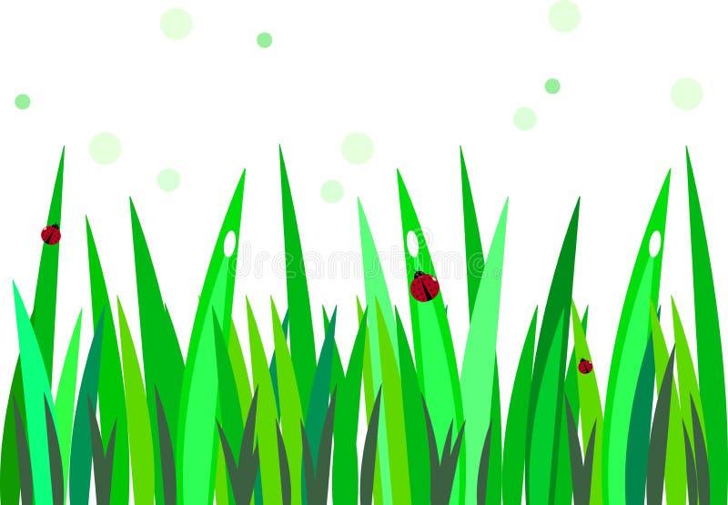 Nyckelpiga på gräs royaltyfri illustrationer