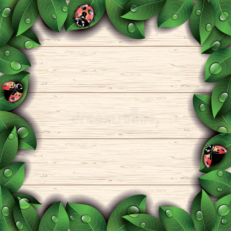 Nyckelpigor och gräsplansidor på träbakgrund royaltyfri illustrationer