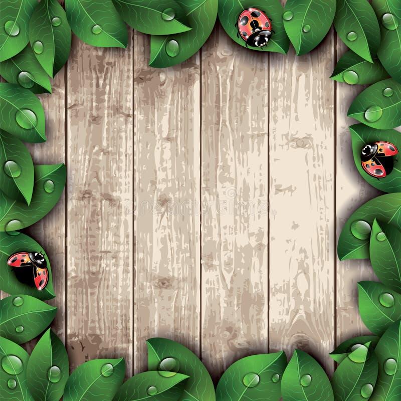 Nyckelpigor och sidor på trätexturbakgrund stock illustrationer