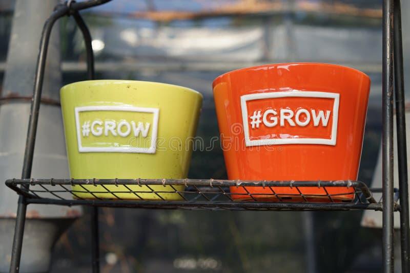 Nyckfulla houseplantkrukor fotografering för bildbyråer