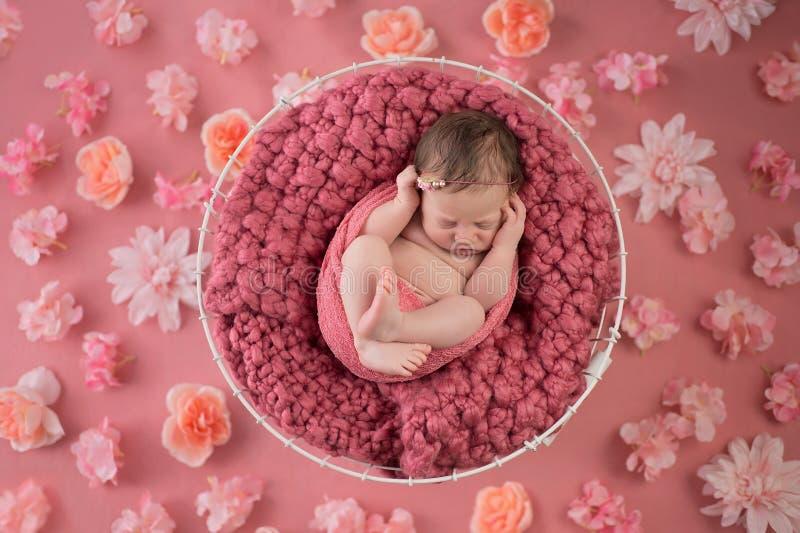 Nyfödd flicka som sover i trådkorg royaltyfri fotografi