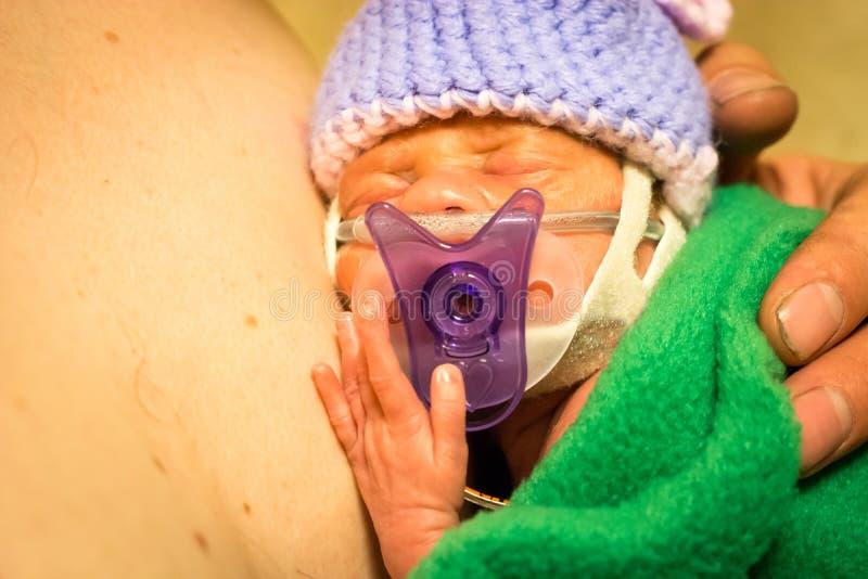 Nyfödd flickahud för Preemie som ska flås med farsan royaltyfria foton