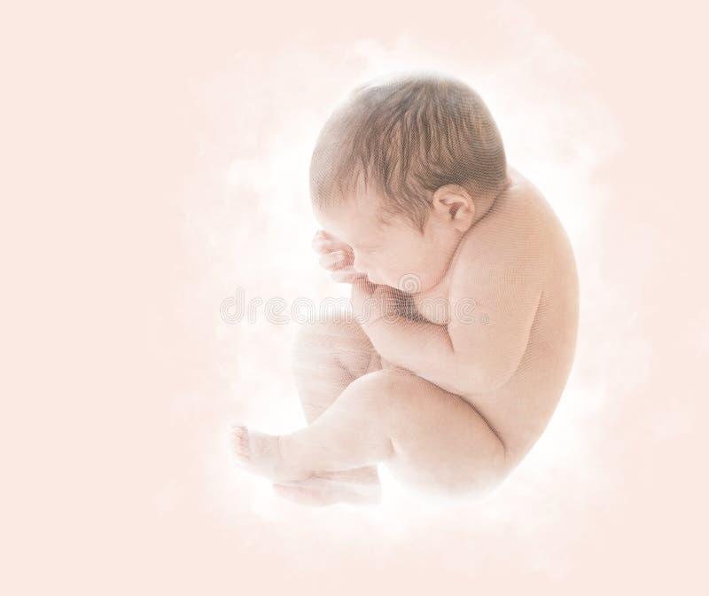Nyfött behandla som ett barn, den nyfödda ungen i det nionde månadembryot, mänskligt foster, U fotografering för bildbyråer
