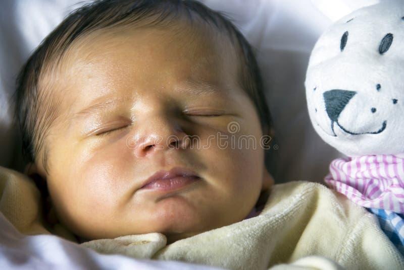 nyfött sova sött arkivfoto