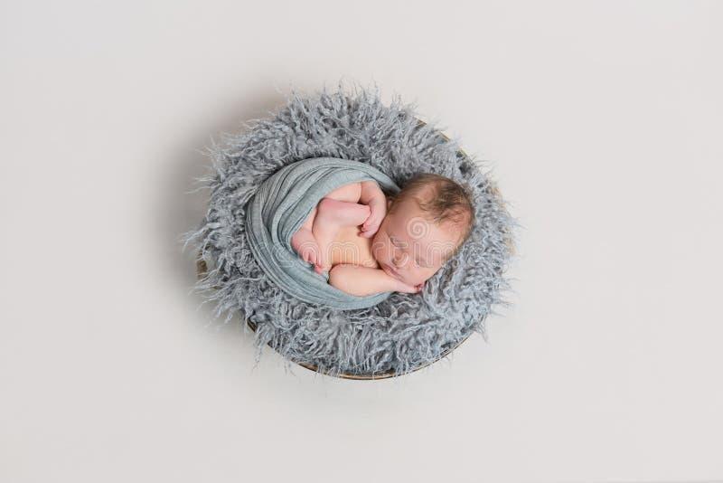 Nyfött sova som krullas i hans sjal, topview royaltyfria bilder