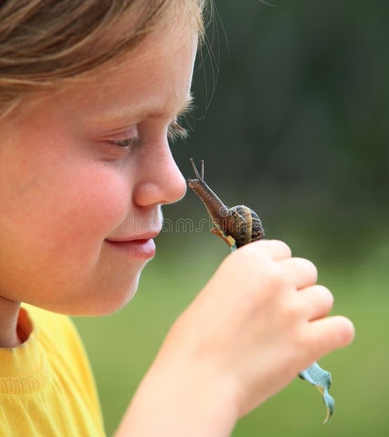 nyfiken snail royaltyfri fotografi