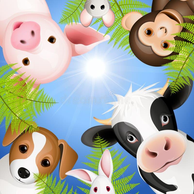 nyfikna djur vektor illustrationer