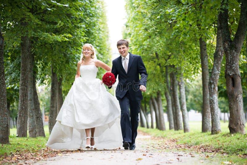 nygift person arkivfoton