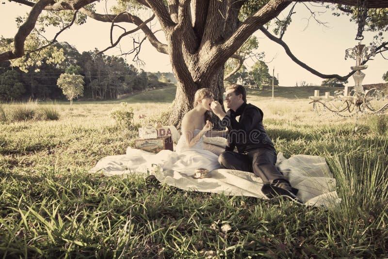 Nygift personpar i fält royaltyfri foto