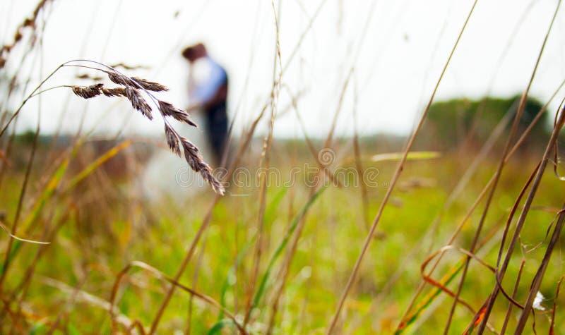 Nygift personpar som är lyckliga tillsammans på fältet, i förgrundsöronen royaltyfri foto