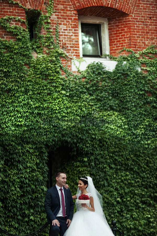 Nygift personvalentynes kopplar ihop med rosbuketten som poserar nära vinranka c arkivfoton