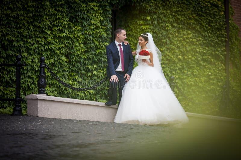 Nygift personvalentynes kopplar ihop med rosbuketten som poserar nära vinranka c royaltyfria foton