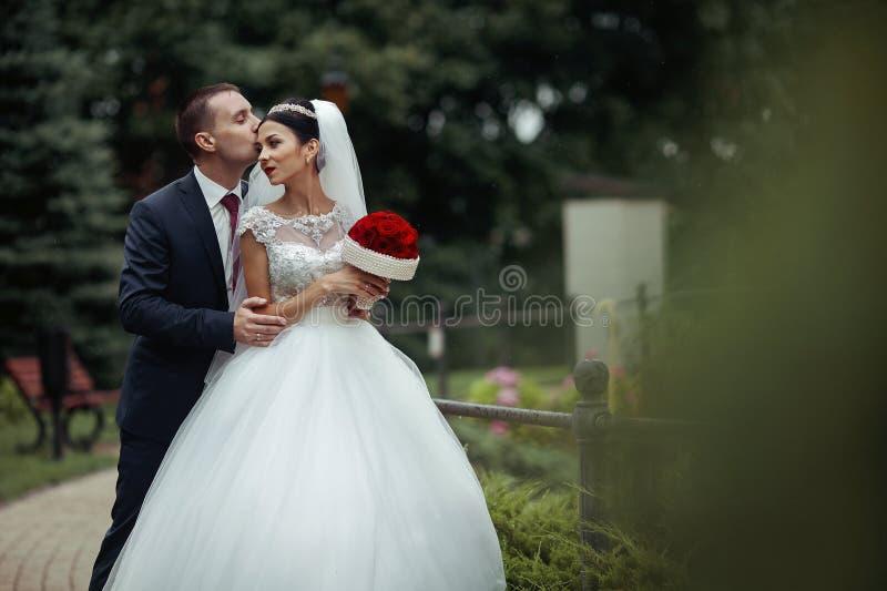 Nygift personvalentynes som poserar och kramar i romantiskt européPA arkivbild