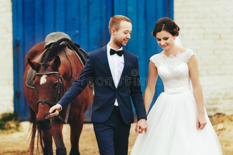 Nygifta personer går med en häst från stallet arkivbilder