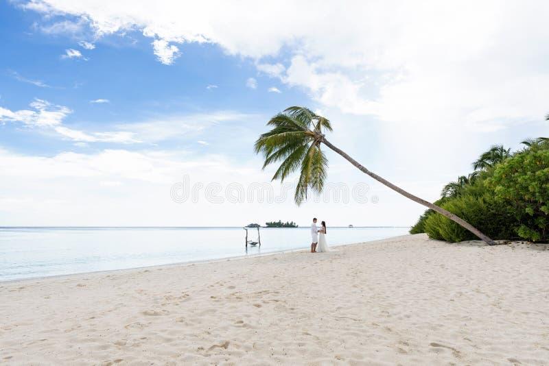Nygifta personer kramar under en palmträd på en ursnygg strand med vitt sand- och turkosvatten arkivbild