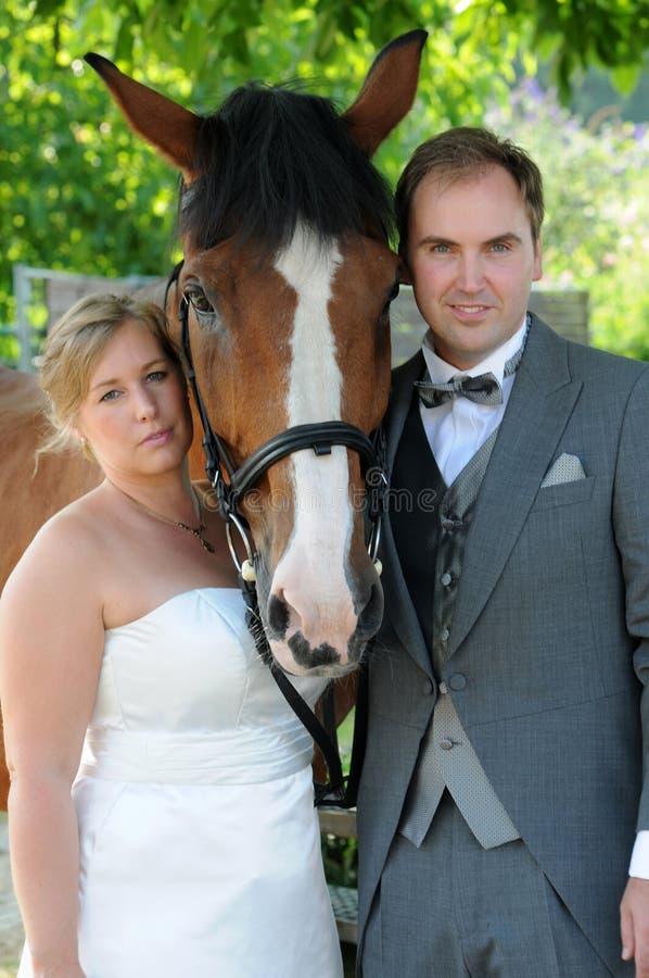 Nygifta personer med hästen royaltyfria foton