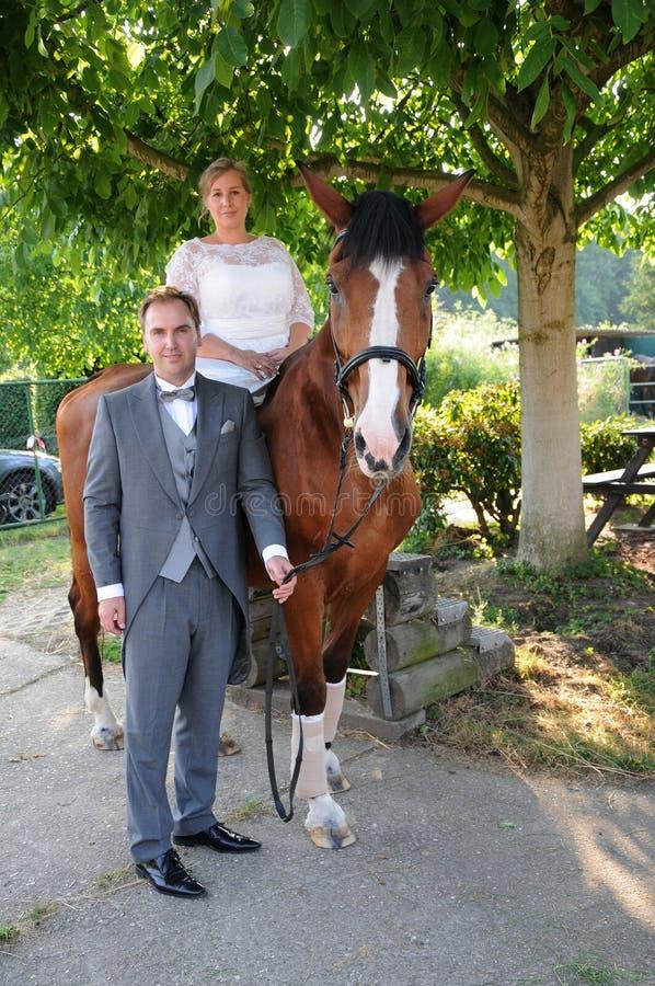 Nygifta personer med hästen arkivbild