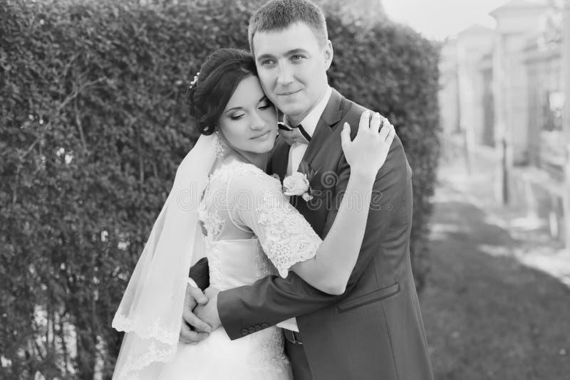 Nygifta personer på bröllopet en gå i bygden royaltyfri fotografi