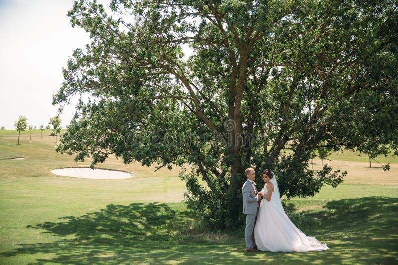 Nygifta personer på en grön trädbakgrund i en golfklubb på en bröllopdag Brudgummen i en affärsdräkt är grå färg och bruden arkivfoton